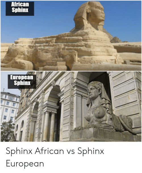 Sphinx, African, and European: African  Sphinx  European  Sphinx Sphinx African vs Sphinx European