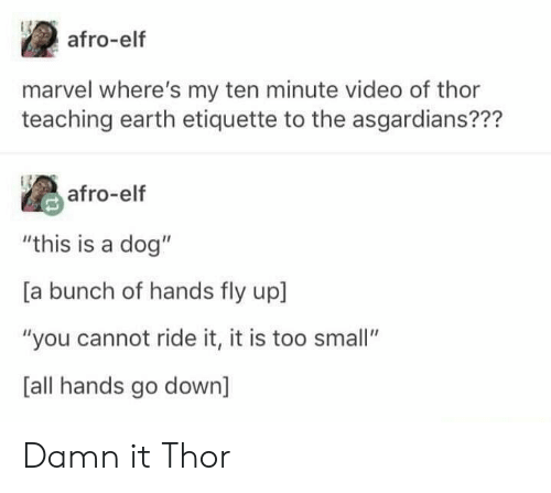 """Ridings: afro-elf  marvel where's my ten minute video of thor  teaching earth etiquette to the asgardians???  afro-elf  """"this is a dog""""  [a bunch of hands fly up  """"you cannot ride it, it is too small""""  [all hands go down] Damn it Thor"""