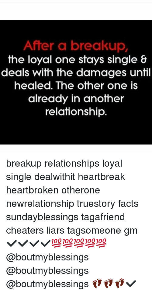 Facts, Memes, and Relationships: After a breakup  the loyal one stays single &  deals with the damages until  healed. The other one is  already in another  relationship breakup relationships loyal single dealwithit heartbreak heartbroken otherone newrelationship truestory facts sundayblessings tagafriend cheaters liars tagsomeone gm ✔✔✔✔💯💯💯💯💯 @boutmyblessings @boutmyblessings @boutmyblessings 👣👣👣✔