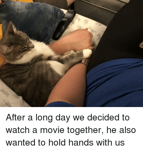 Movie, Watch, and Wanted