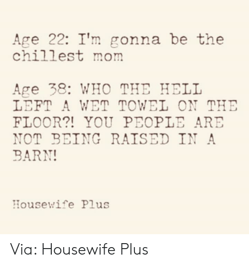 Dank, Hell, and Mom: Age 22: I'm gonna be the  chillest mom  Age 38: WHO THE HELL  LEFT A WET TOWEL ON THE  FLOOR?! YOU PEOPLE ARE  NOT BEING RAISED IN A  BARN!  Housewife Plus Via: Housewife Plus