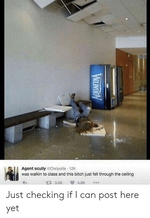 Walkin: Agent scully @Chripotle 12h  was walkin to class and this bitch just fell through the ceiling  3 3.5K  4.8K  AQUAFINA Just checking if I can post here yet