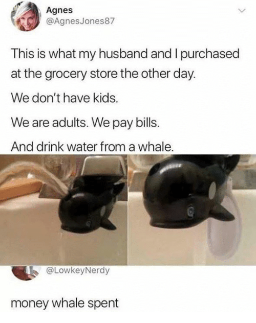 Dank, Money, and Kids: Agnes  @AgnesJones87  This is what my husband and I purchased  at the grocery store the other day.  We don't have kids.  We are adults. We pay bills.  And drink water from a whale  @LowkeyNerdy  money whale spent