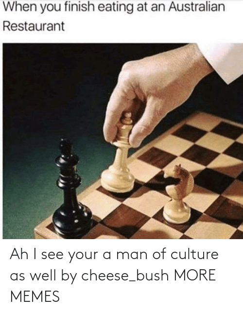 Man Of Culture: Ah I see your a man of culture as well by cheese_bush MORE MEMES