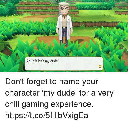 Chill, Dude, and Experience: Ah! If it isn't my dude! Don't forget to name your character 'my dude' for a very chill gaming experience. https://t.co/5HlbVxigEa
