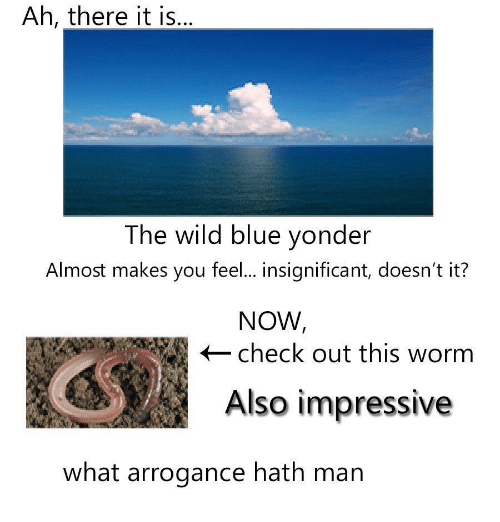 arrogance: Ah, there it is,  The wild blue yonder  Almost makes you feel... insignificant, doesn't it?  NOW  check out this worm  Also impressive  what arrogance hath man
