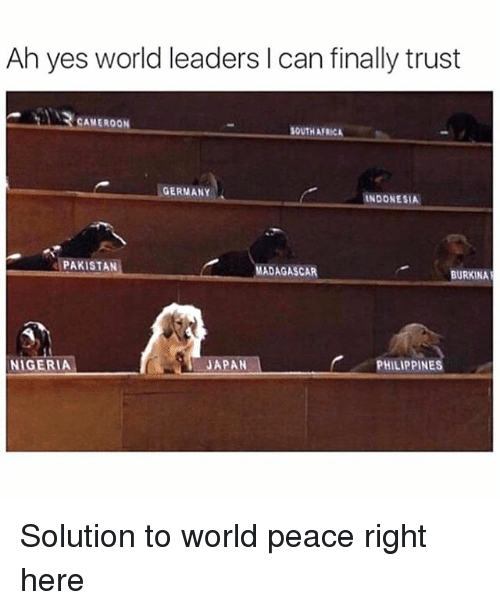Africa, Germany, and Indonesia: Ah yes world leaders I can finally trust  CAMEROON  SOUTH AFRICA  GERMANY  INDONESIA  PAKISTAN  MADAGASCAR  BURKINA  JAPAN  PHILIPPINES  NIGERIA Solution to world peace right here