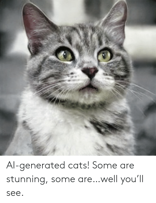 Cats, You, and Well: AI-generated cats! Some are stunning, some are…well you'll see.