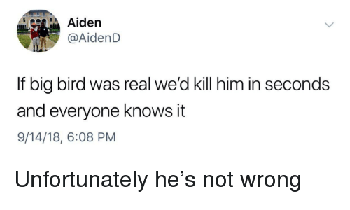 Big Bird: Aiden  AidenD  If big bird was real we'd kill him in seconds  and everyone knows it  9/14/18, 6:08 PM Unfortunately he's not wrong