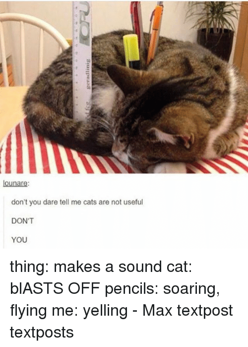 Cats, Memes, and 🤖: AIN  lounare  don't you dare tell me cats are not useful  DON'T  YOU thing: makes a sound cat: blASTS OFF pencils: soaring, flying me: yelling - Max textpost textposts
