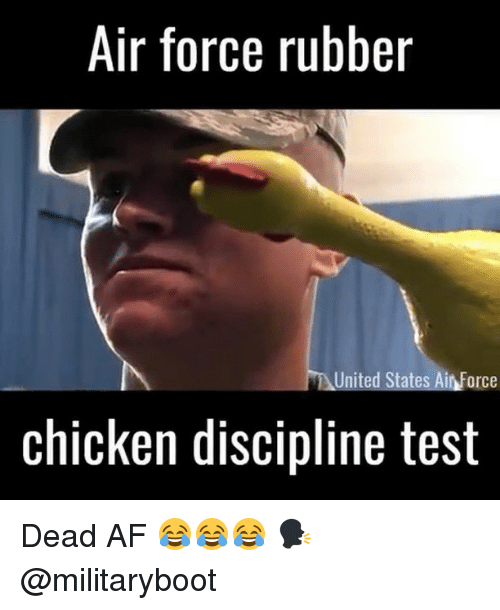 Af, Memes, and Air Force: Air force rubber  United States Air Force  chicken discipline test Dead AF 😂😂😂 🗣 @militaryboot
