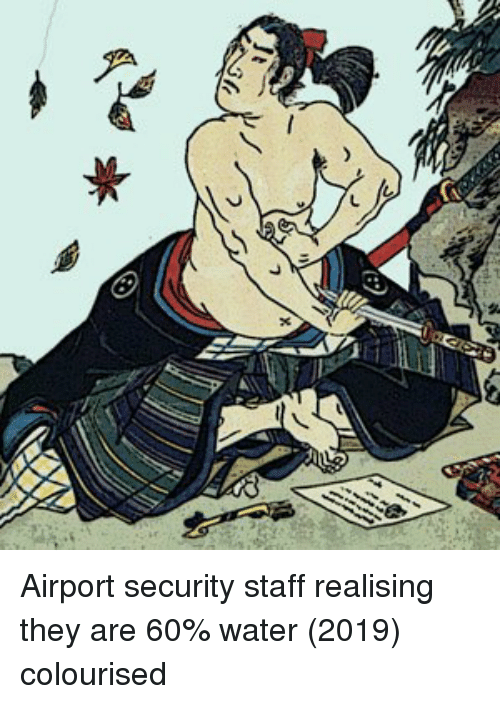 Water, Staff, and Security: Airport security staff realising they are 60% water (2019) colourised
