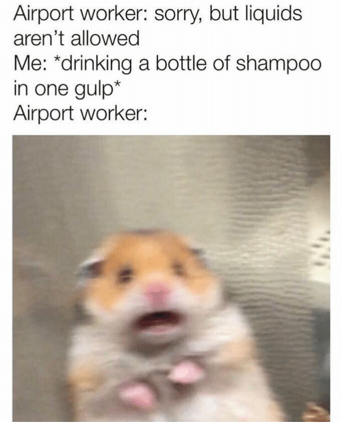 "Drinking, Sorry, and One: Airport worker: sorry, but liquids  aren't allowed  Me: ""drinking a bottle of shampoo  in one gulp*  Airport worker:"