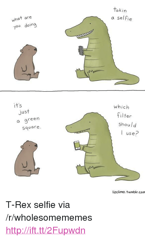"""Lizclimo Tumblr: akin  what are  you doing  a selfie  it's  which  Jus  a gree  square  filter  shoul d  I use?  lizclimo. tumblr.com <p>T-Rex selfie via /r/wholesomememes <a href=""""http://ift.tt/2Fupwdn"""">http://ift.tt/2Fupwdn</a></p>"""