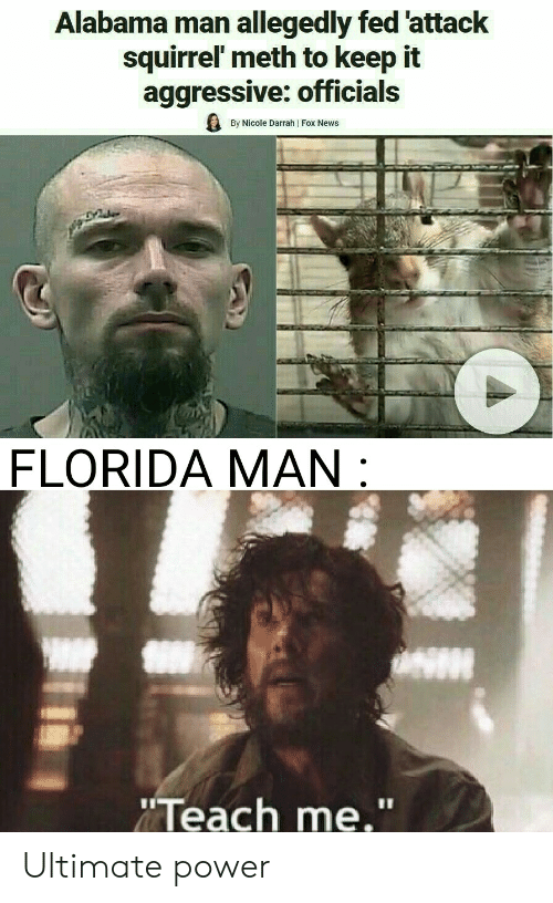 """Florida Man, News, and Alabama: Alabama man allegedly fed 'attack  squirrel meth to keep it  aggressive: officials  By Nicole Darrah 