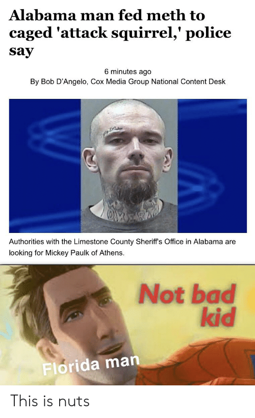 Bad, Florida Man, and Police: Alabama man fed meth to  caged 'attack squirrel,' police  say  6 minutes ago  By Bob D'Angelo, Cox Media Group National Content Desk  Authorities with the Limestone County Sheriff's Office in Alabama are  looking for Mickey Paulk of Athens.  Not bad  kid  Florida man This is nuts