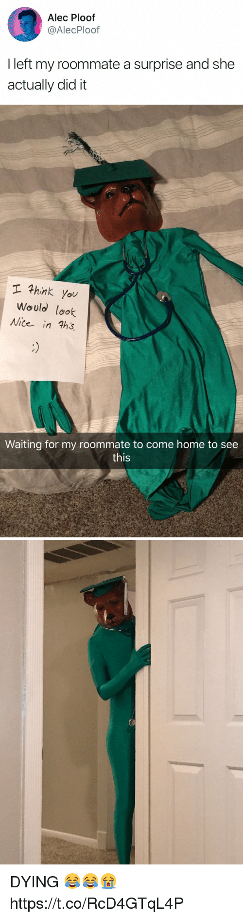 Roommate, Home, and Girl Memes: Alec Ploof  @AlecPloof  I left my roommate a surprise and she  actually did it   hink you  Would look  Nite in ths  Waiting for my roommate to come home to see  this DYING 😂😂😭 https://t.co/RcD4GTqL4P