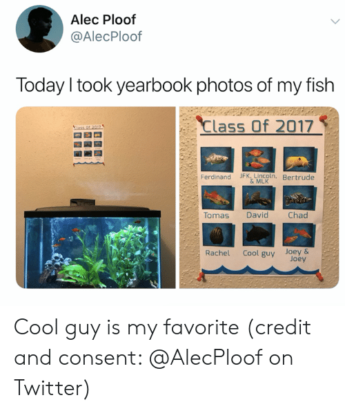 Lincoln: Alec Ploof  @AlecPloof  Today I took yearbook photos of my fish  Class Of 2017  ass Of 2017  Ferdinand JFK, Lincoln, Bertrude  &MLK  Tomas  Chad  David  Cool guy Joey&  Joey  Rachel Cool guy is my favorite (credit and consent: @AlecPloof on Twitter)