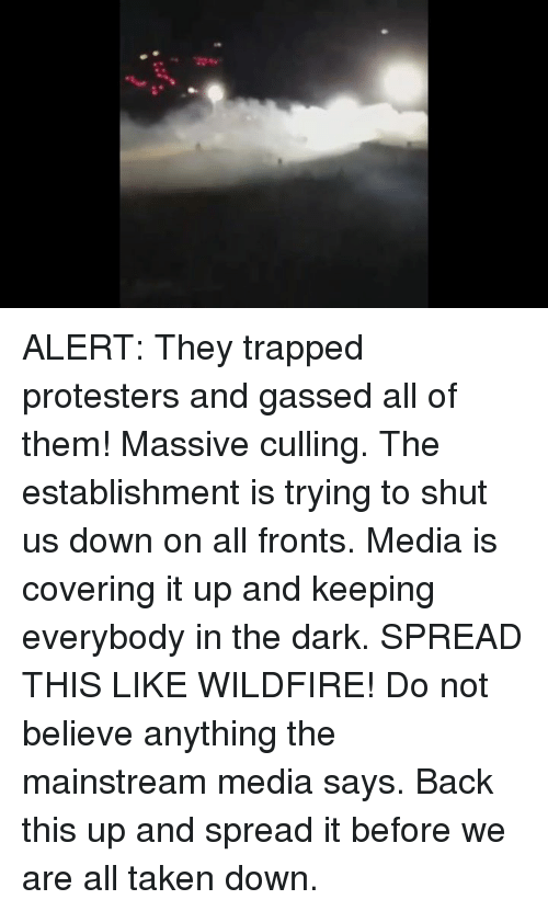 Memes, Protest, and Taken: ALERT: They trapped protesters and gassed all of them! Massive culling. The establishment is trying to shut us down on all fronts.  Media is covering it up and keeping everybody in the dark. SPREAD THIS LIKE WILDFIRE!  Do not believe anything the mainstream media says. Back this up and spread it before we are all taken down.