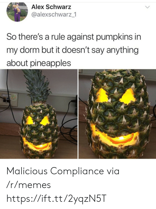 Malicious: Alex Schwarz  @alexschwarz 1  So there's a rule against pumpkins in  my dorm but it doesn't say anything  about pineapples Malicious Compliance via /r/memes https://ift.tt/2yqzN5T