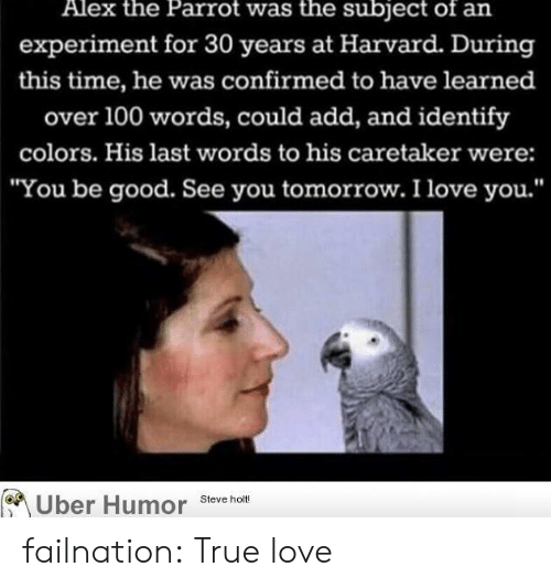 "Anaconda, Love, and True: Alex the Parrot was the subject of an  experiment for 30 years at Harvard. During  this time, he was confirmed to have learned  over 100 words, could add, and identify  colors. His last words to his caretaker were:  ""You be good. See you tomorrow. I love you.'""  Uber Humor Steve holt failnation:  True love"