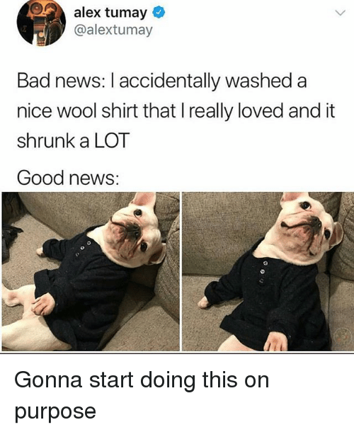 Bad, News, and Good: alex tumay  @alextumay  Bad news: I accidentally washed a  nice wool shirt that I really loved and it  shrunk a LOT  Good news: Gonna start doing this on purpose