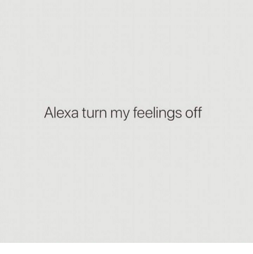 Humans of Tumblr, Alexa, and Turn: Alexa turn my feelings off