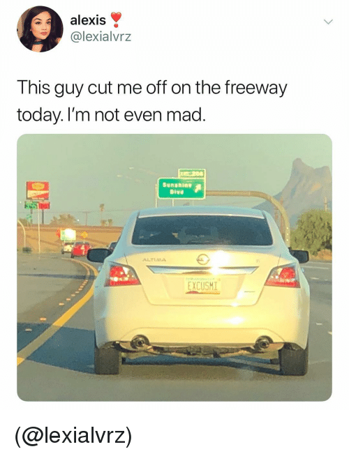 Today, Dank Memes, and Mad: alexis  @lexialvrz  This guy cut me off on the freeway  today. l'm not even mad  Sunshine  ALTIAA  EXCUSHI (@lexialvrz)