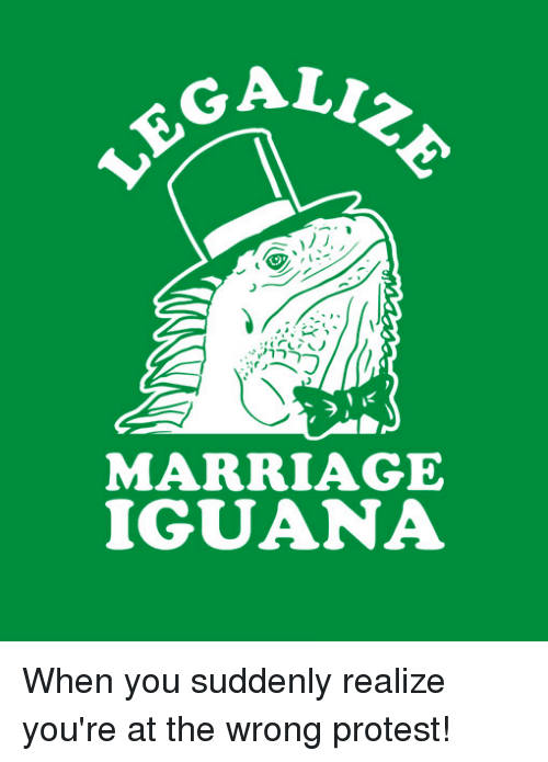 Ali, Memes, and 🤖: ALI  ®.®.irノヘ  1に  MARRIAGE  IGUANA When you suddenly realize you're at the wrong protest!