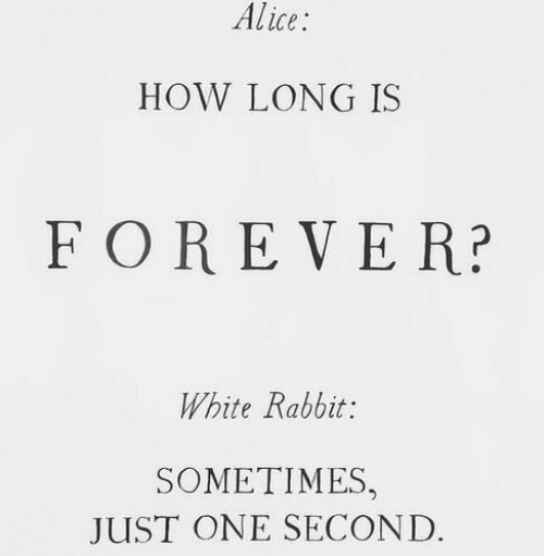 Forever, Rabbit, and White: Alice  HOW LONG IS  FOREVER?  White Rabbit:  SOMETIMES,  JUST ONE SECOND.