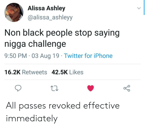 Iphone, Twitter, and Black: Alissa Ashley  @alissa_ashleyy  Non black people stop saying  nigga challenge  9:50 PM 03 Aug 19 Twitter for iPhone  16.2K Retweets 42.5K Likes All passes revoked effective immediately