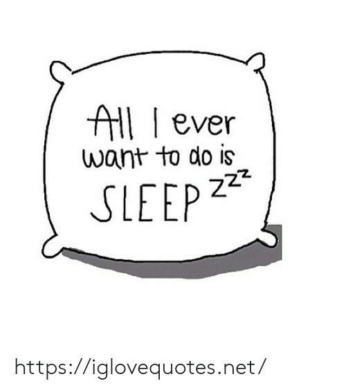 Sleep, Net, and All: All ever  want to do is  z22  SLEEP https://iglovequotes.net/