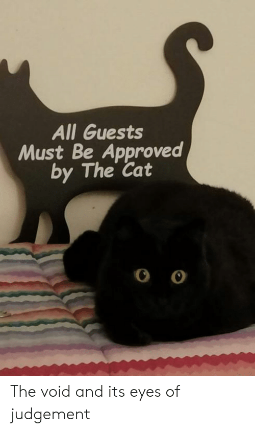 Dank, Approved, and 🤖: All Guests  Must Be Approved  by The Cat The void and its eyes of judgement
