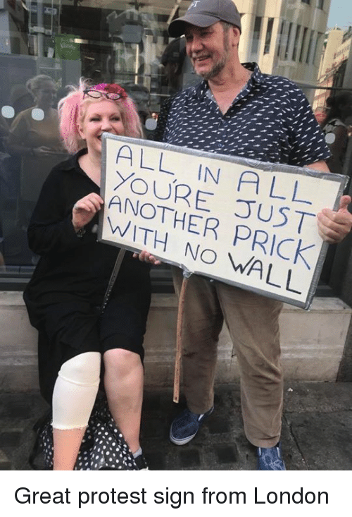 Protestation: ALL IN ALL  YOUR E TJST  ANOTHER PRICK  WITH NO WALL Great protest sign from London