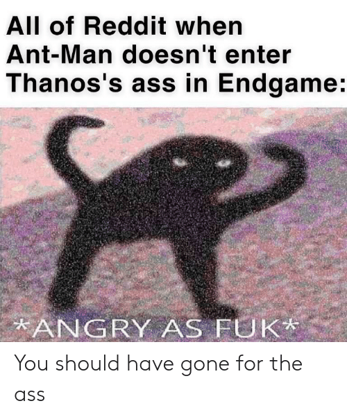 Ass, Reddit, and Angry: All of Reddit when  Ant-Man doesn't enter  Thanos's ass in Endgame:  ANGRY AS FUK You should have gone for the ass
