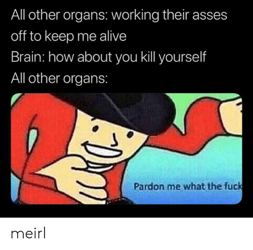 kill yourself: All other organs: working their asses  off to keep me alive  Brain: how about you kill yourself  All other organs:  Pardon me what the fuck meirl