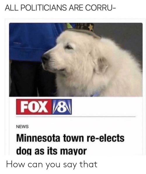 News, Reddit, and Minnesota: ALL POLITICIANS ARE CORRU-  FOX 8  NEWS  Minnesota town re-elects  doq as its mayor How can you say that