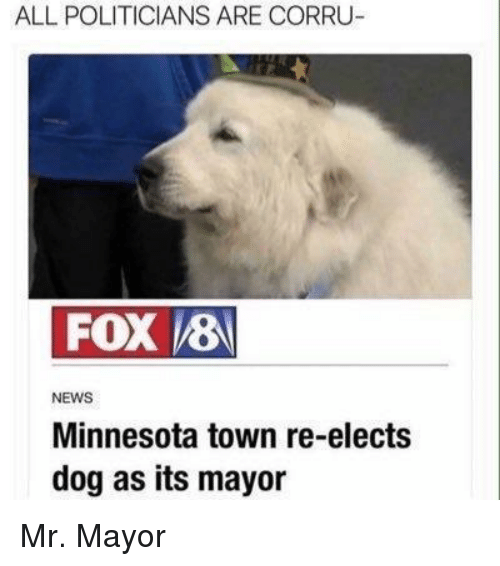 News, Minnesota, and Politicians: ALL POLITICIANS ARE CORRU  NEWS  Minnesota town re-elects  dog as its mayor Mr. Mayor