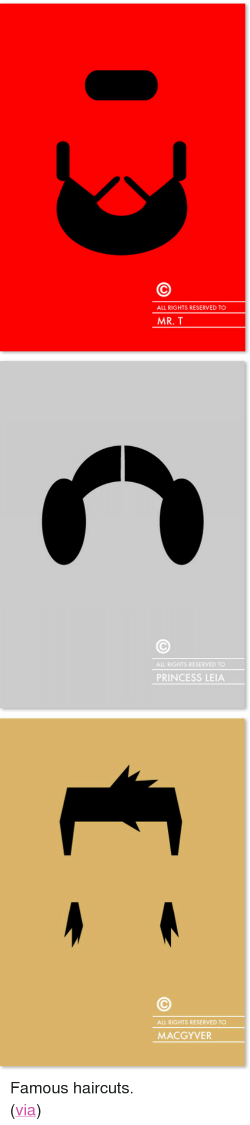 """Mr T, Princess Leia, and Target: ALL RIGHTS RESERVED TO  MR. T   ALL RIGHTS RESERVED TO  PRINCESS LEIA   ALL RIGHTS RESERVED TO  MACGYVER <p>Famous haircuts.</p> <p>(<a href=""""http://cargocollective.com/patriciapovoa/copyrighted-famous-hairs"""" target=""""_blank"""">via</a>)</p>"""