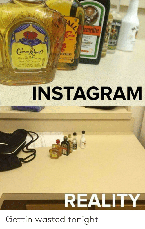 Instagram, Canada, and Reality: ALL  rmeifter  M4  HOT  Cewn Reyal  N WHISKY  LONL  TORDNTO, ONTARIO CANADA  50ml-40% AlC 9Y VC 80 POO  INSTAGRAM  REALITY Gettin wasted tonight