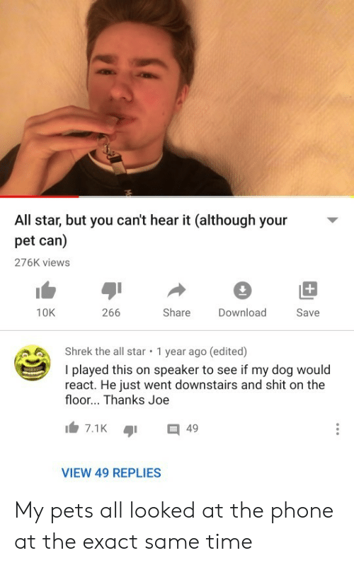 Exact: All star, but you can't hear it (although your  pet can)  276K views  +  266  Share  10K  Download  Save  Shrek the all star  1 year ago (edited)  I played this on speaker to see if my dog would  react. He just went downstairs and shit on the  floor... Thanks Joe  7.1K  49  VIEW 49 REPLIES My pets all looked at the phone at the exact same time
