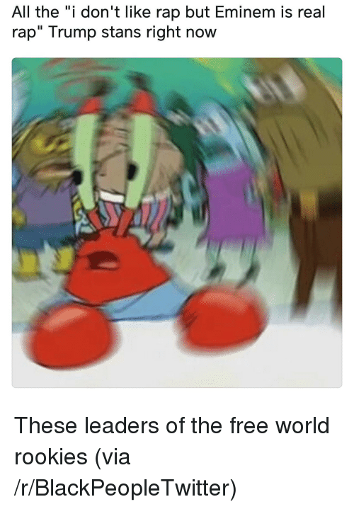 """the-free-world: All the """"i don't like rap but Eminem is real  rap"""" Trump stans right now <p>These leaders of the free world rookies (via /r/BlackPeopleTwitter)</p>"""