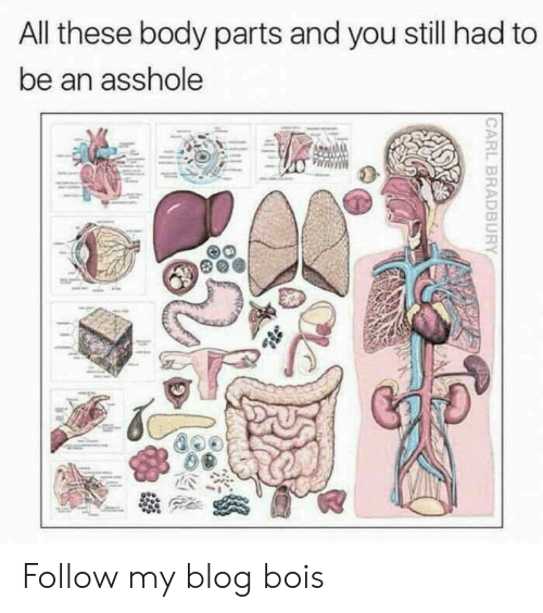 Blog, Asshole, and All: All these body parts and you still had to  be an asshole Follow my blog bois