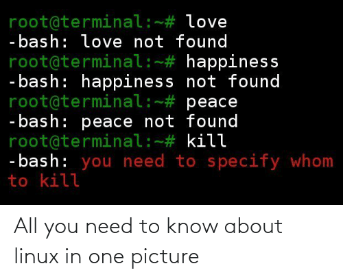 need-to-know: All you need to know about linux in one picture