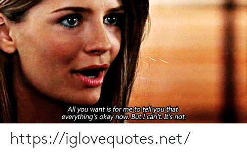 Okay, Net, and All: All you want is for me to tell you that  everything's okay now. But I can't. It's not. https://iglovequotes.net/