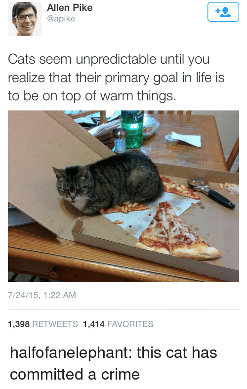 spl: Allen Pike  @apike  Cats seem unpredictable until you  realize that their primary goal in life is  to be on top of warm things.  Spl  7/24/15, 1:22 AM  1,398 RETWEETS 1,414 FAVORITES halfofanelephant:  this cat has committed a crime