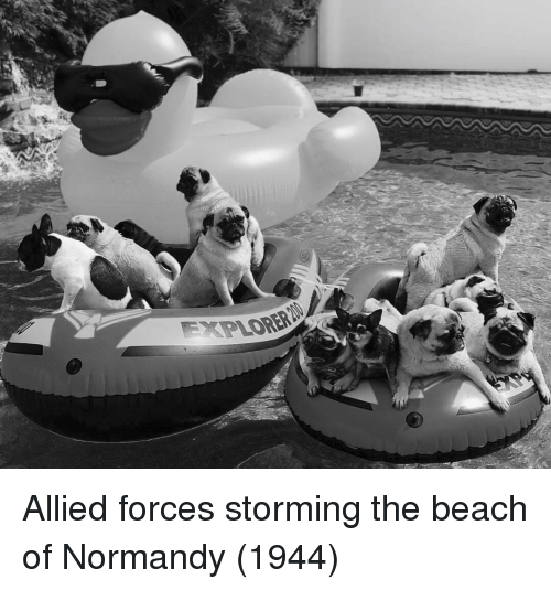 Beach, The Beach, and Normandy: Allied forces storming the beach of Normandy (1944)