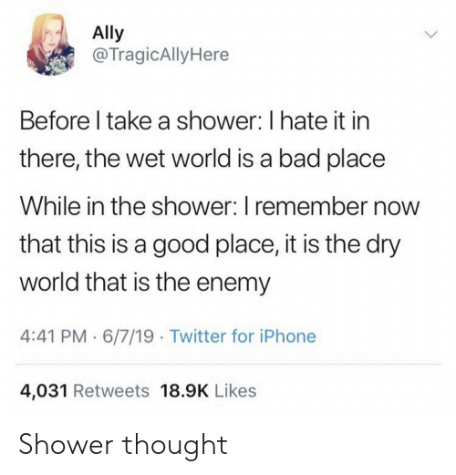 Bad, Iphone, and Shower: Ally  @TragicAlly Here  Before I take a shower: I hate it in  there, the wet world is a bad place  While in the shower: I remember now  that this is a good place, it is the dry  world that is the enemy  4:41 PM 6/7/19 Twitter for iPhone  4,031 Retweets 18.9K Likes Shower thought