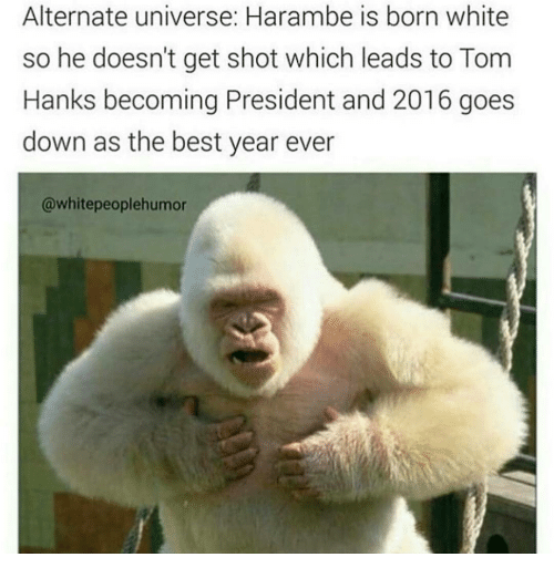 Tom Hank: Alternate universe: Harambe is born white  so he doesn't get shot which leads to Tom  Hanks becoming President and 2016 goes  down as the best year ever  @whitepeoplehumor