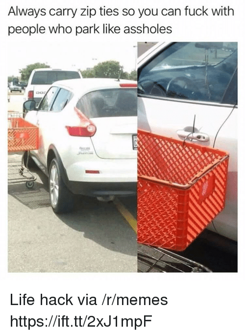 Life, Memes, and Life Hack: Always carry zip ties so you can fuck with  people who park like assholes Life hack via /r/memes https://ift.tt/2xJ1mpF
